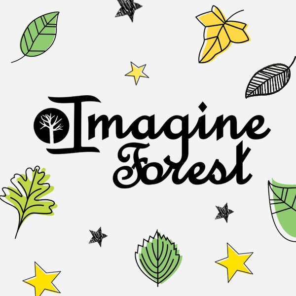 Imagine Forest Project
